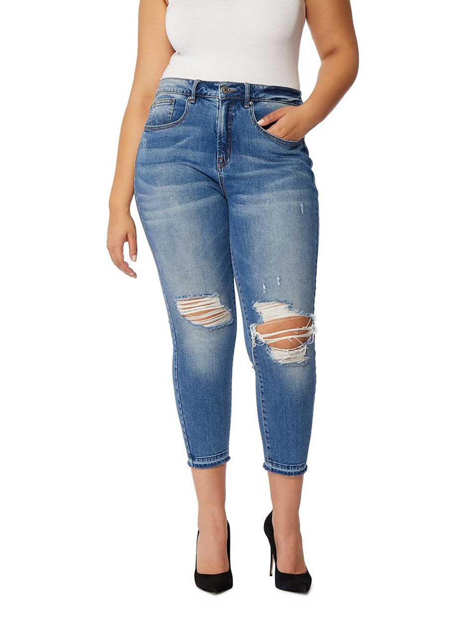 Rebel Wilson The Retro High-Rise Straight Ankle Jean