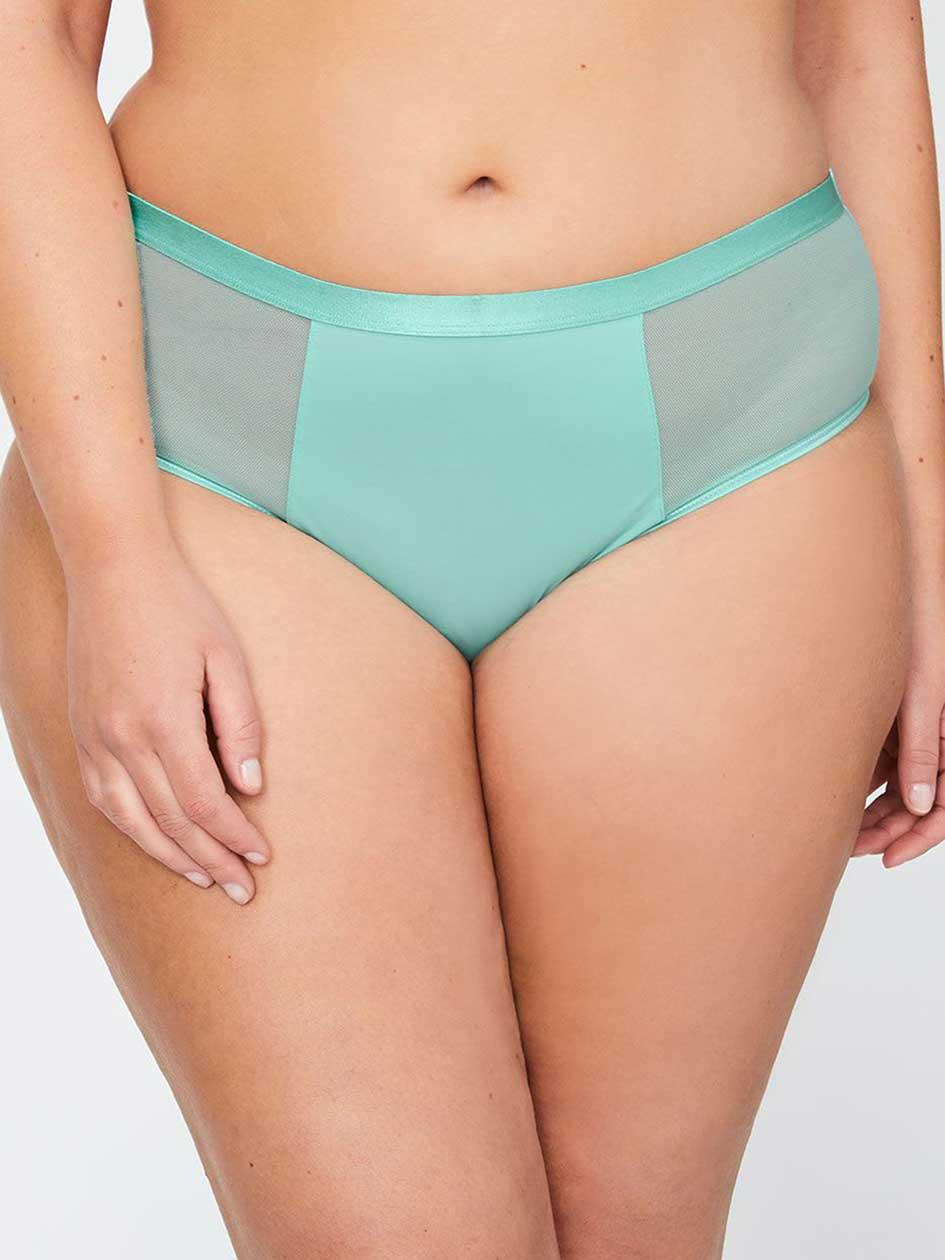 Bikini Panty with mesh