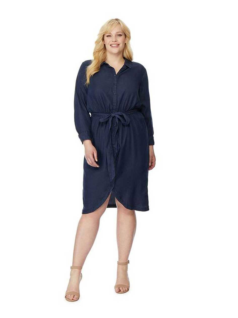 Rebel Wilson Buttoned Down Chambray Dress